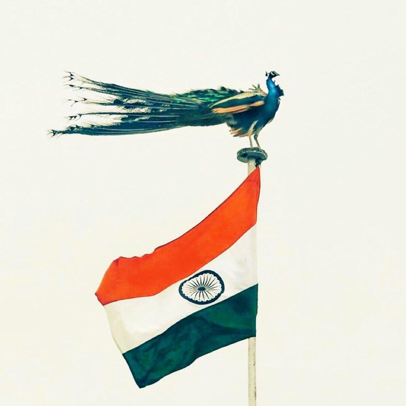 Good wishes on #RepublicDay2021 🇮🇳   गणतंत्र दिवस की बधाई 🦚