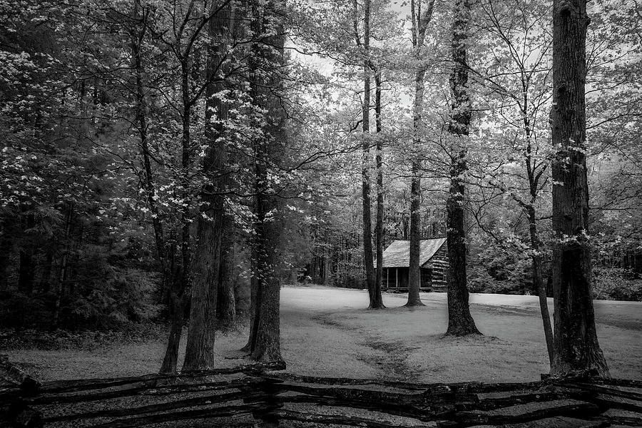 Art for the Eyes!  #smokymountains #cadescove #cabin #photography #fineart #artlovers #naturelovers #artworks #art