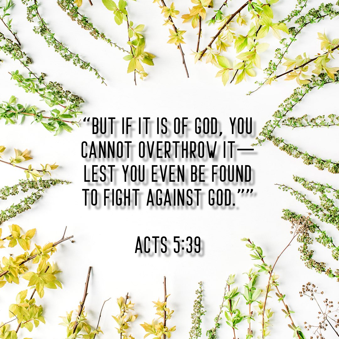 Acts 5:39  #Jesus #love #good #photography #perfect #tuesdaymotivation #faith #joy #tuesday #true #verse #permanent #mercy #success #bible #september #art #daily #tuesdayblessings  #friends #bibleverse #blessed #peace #hope #prayer #goodmorning #kind #morning #patience #Scripture