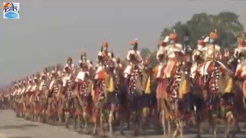 .@BSF_India's Camel Contingent marching down the #Rajpath at the #RepublicDay parade  #RepublicDayIndia #RepublicDay2021