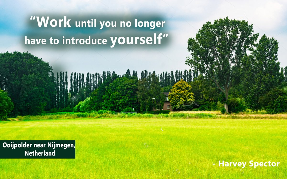Work until you no longer have to introduce yourself - Harvey Spector  #TuesdayThoughts #TuesdayMotivation #TuesdayVibes #TuesdayMorning #Motivationalquotes #MotivationalThoughts #Inspirationalquotes #successquotes #InspirationalThoughts #MotivationalTuesday #naturalsceneries