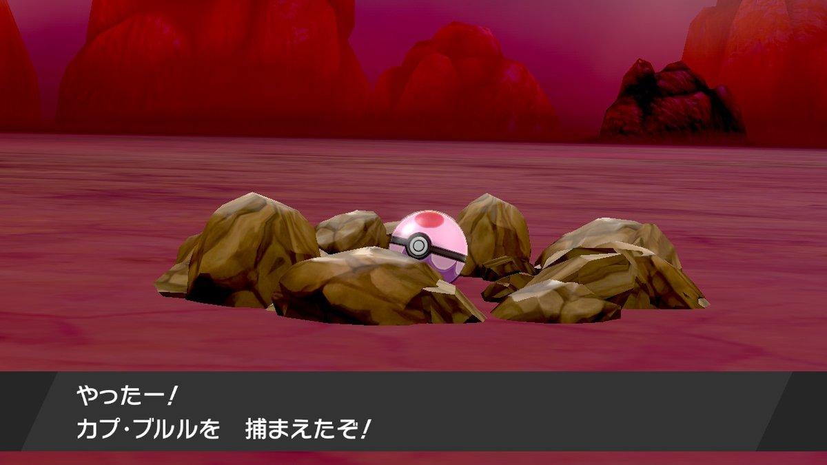 捕獲率 ポケモン剣盾