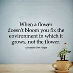 """Image for the Tweet beginning: """"When a flower doesn't bloom"""
