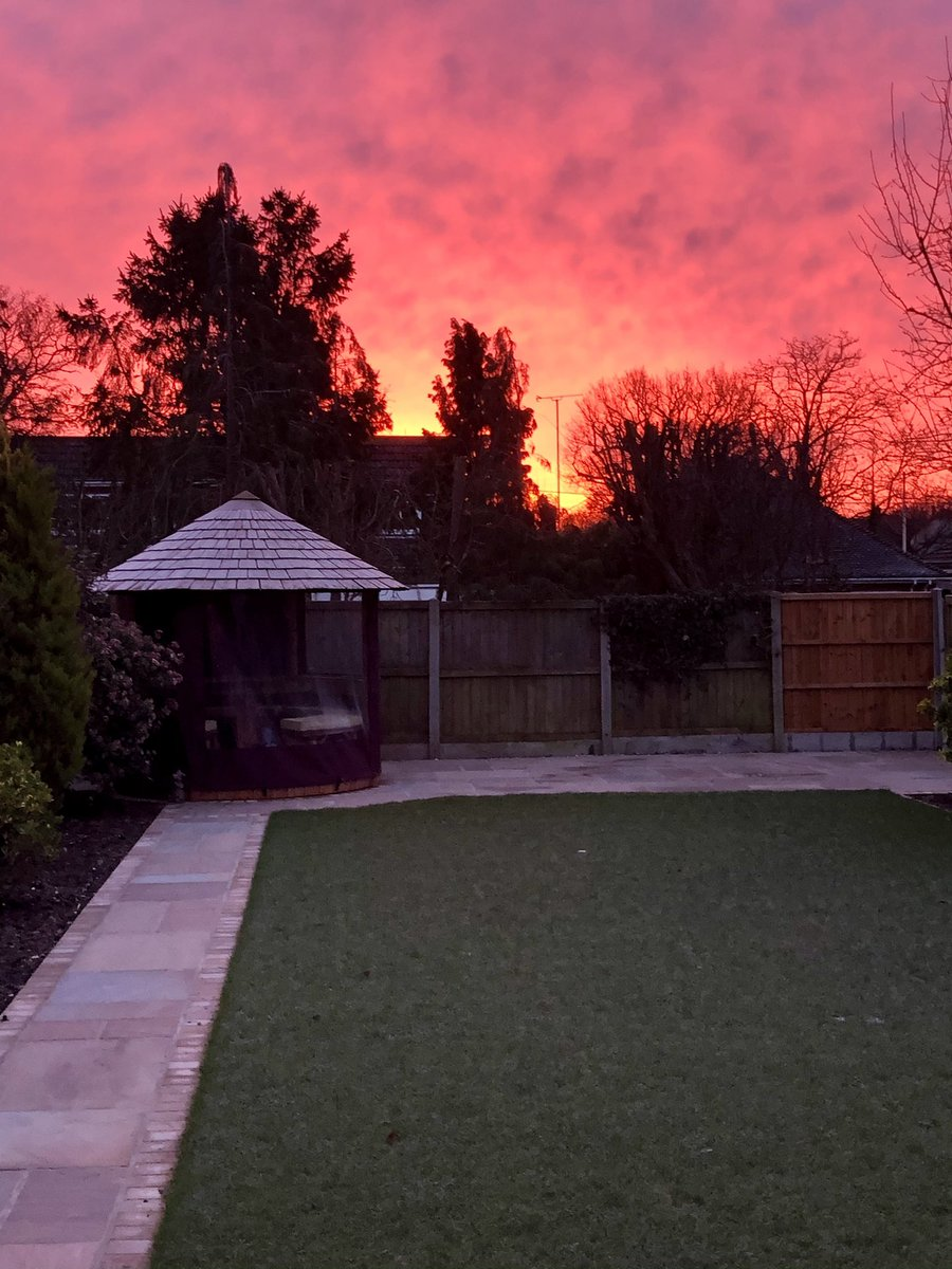 Beautiful sunrise over our garden this morning 🔥 #gratitude #space