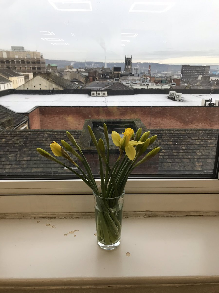 Thank you @DHutchison_ following the top tips from @YorkshireBusin2 and buying some flowers for my office #flowers #positivity