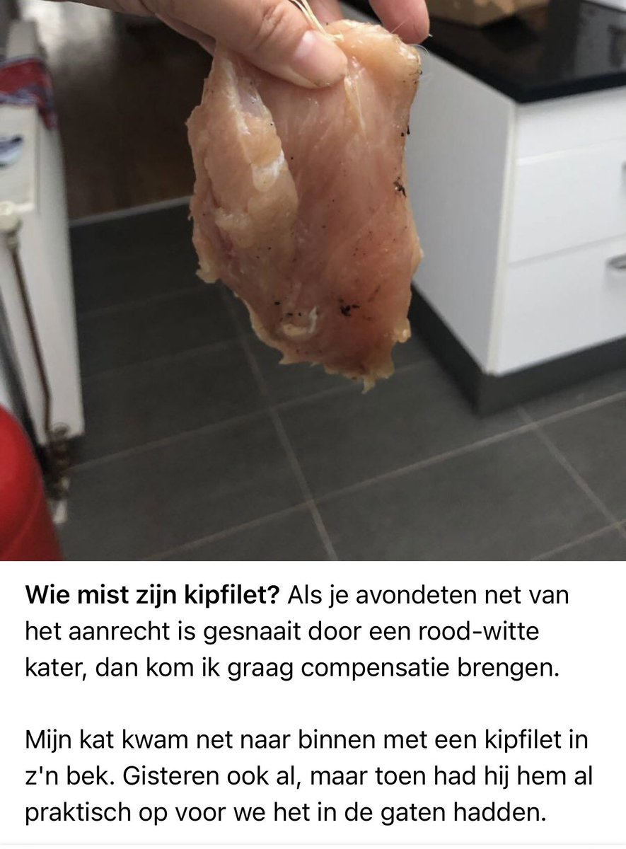 Alles is kut, behalve dit NextDoor berichtje over de Haagse kipfilet-stelende kater https://t.co/5RsM7McYTY