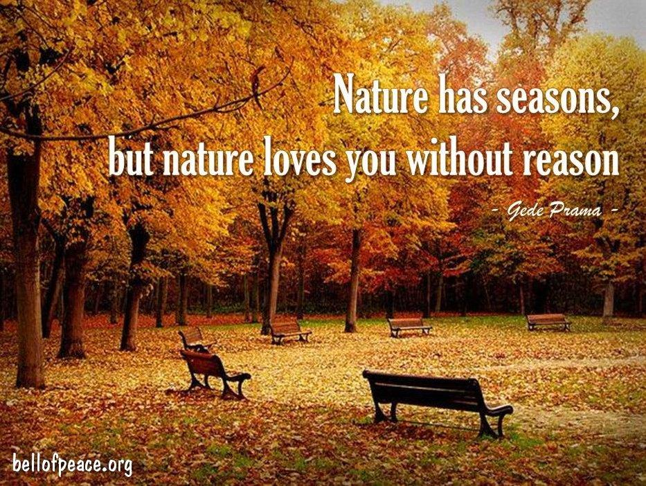 Nature has seasons... #Peace #gedeprama #bali #beauty #happy #healthy #holy #innerharmony #JoyTrain  Photo courtesy: Pinterest