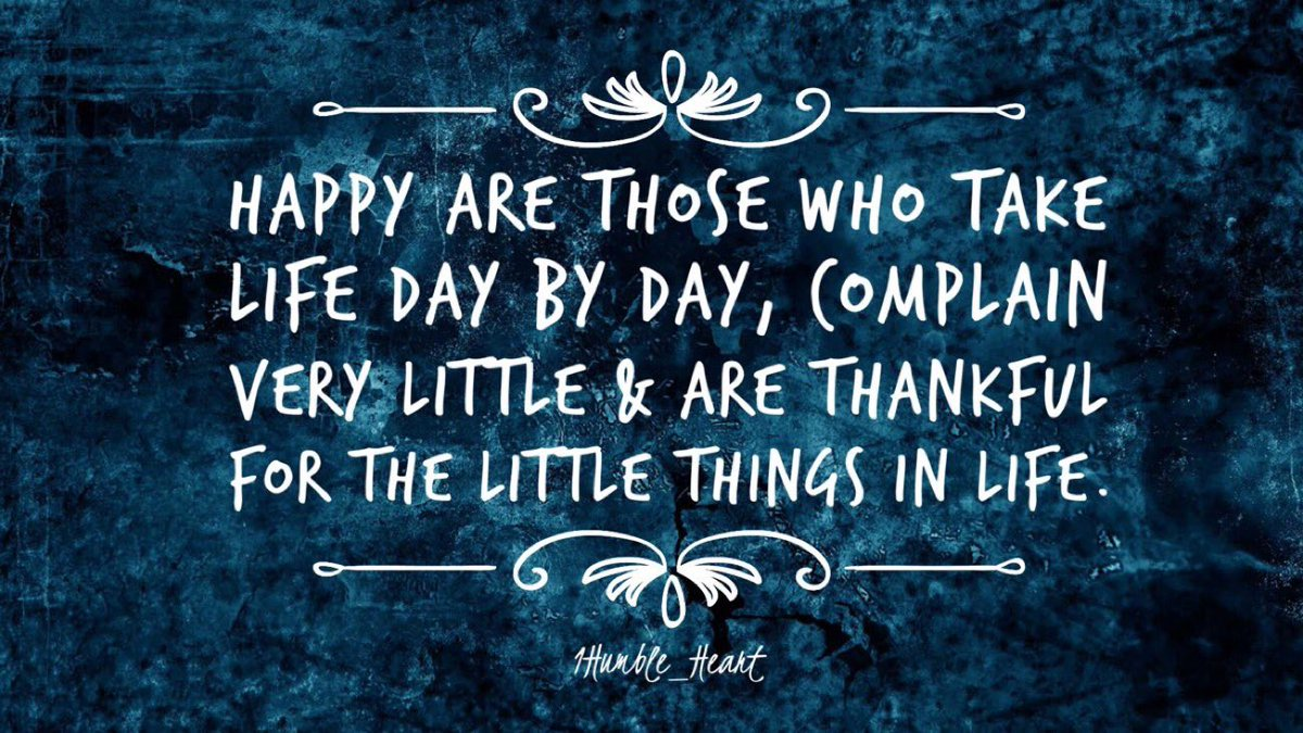 Happy 😊 Tuesday everyone. 🙏🏻May your day be filled with an abundance of little things that bring you Peace amongst the chaos. #tuesdayvibe #tuesdaymotivations
