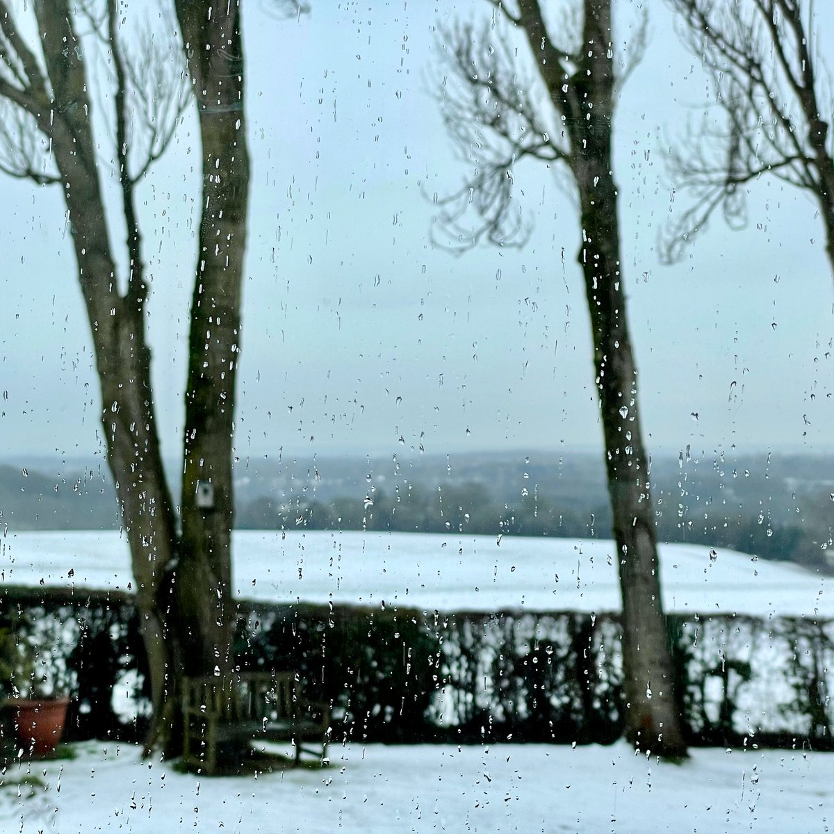 And so, it rains  #rain #raining #snow #snowy #snowyscene #snowydays #wet #wetweather #nikkilewisphotography #nikkilewisphotos #officeview #view #hertfordshire #hertslife #herts #lockdownlife #lockdown3 #lockdown #covid19life #covid19 #winter #winterscene #winterrain #countryside