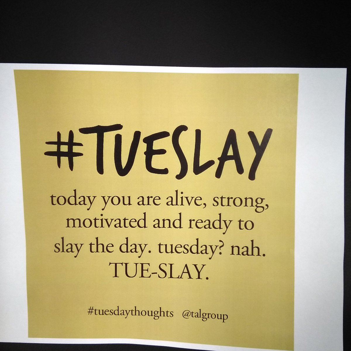 Slay the day with books from the library! Conquer the snow day! #tueslay #tuesdayvibe #tuesdaythoughts