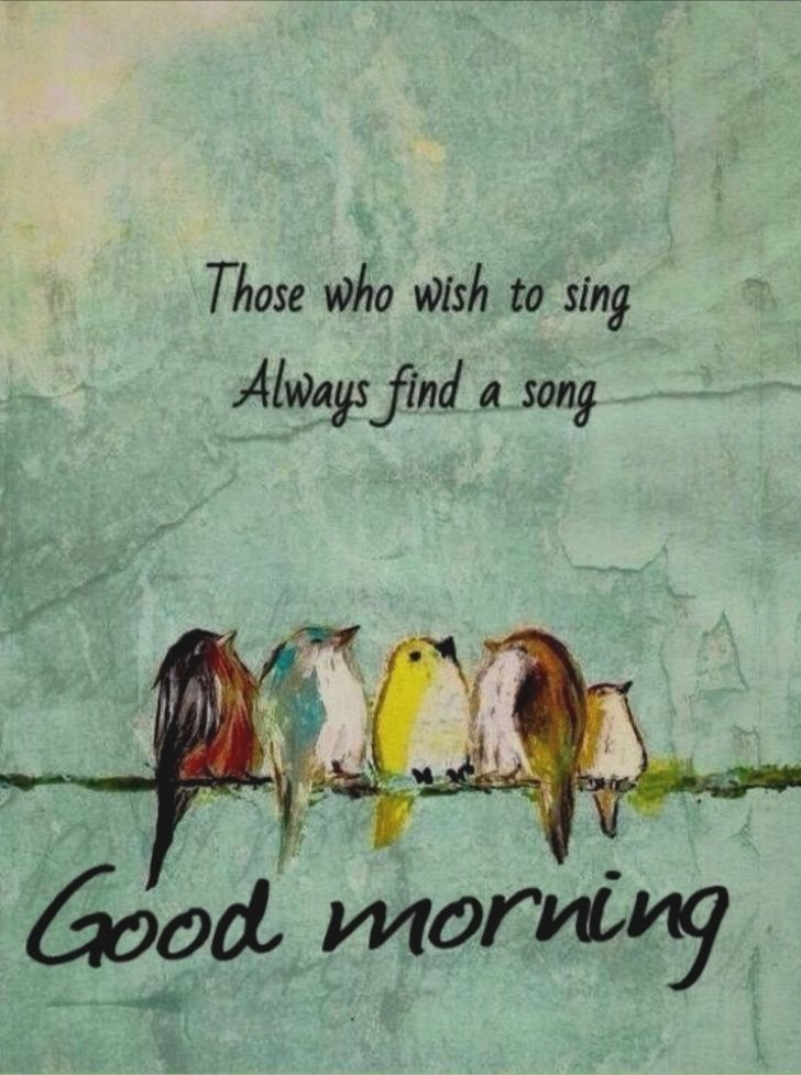 Good Morninggg have a nice day I hope a Good Tuesday for all   #goodmorning #tuesdayvibe #tuesdaymotivations #TuesdayThoughts