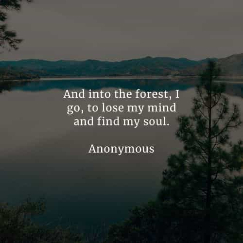 #forest #nature #Peace #spirituality #connection #mind #ecology #home #takeresponsibility #United #family #Planetshakers #beauty #together #green #love #Think #future #Mindset #greenpeace #Earth