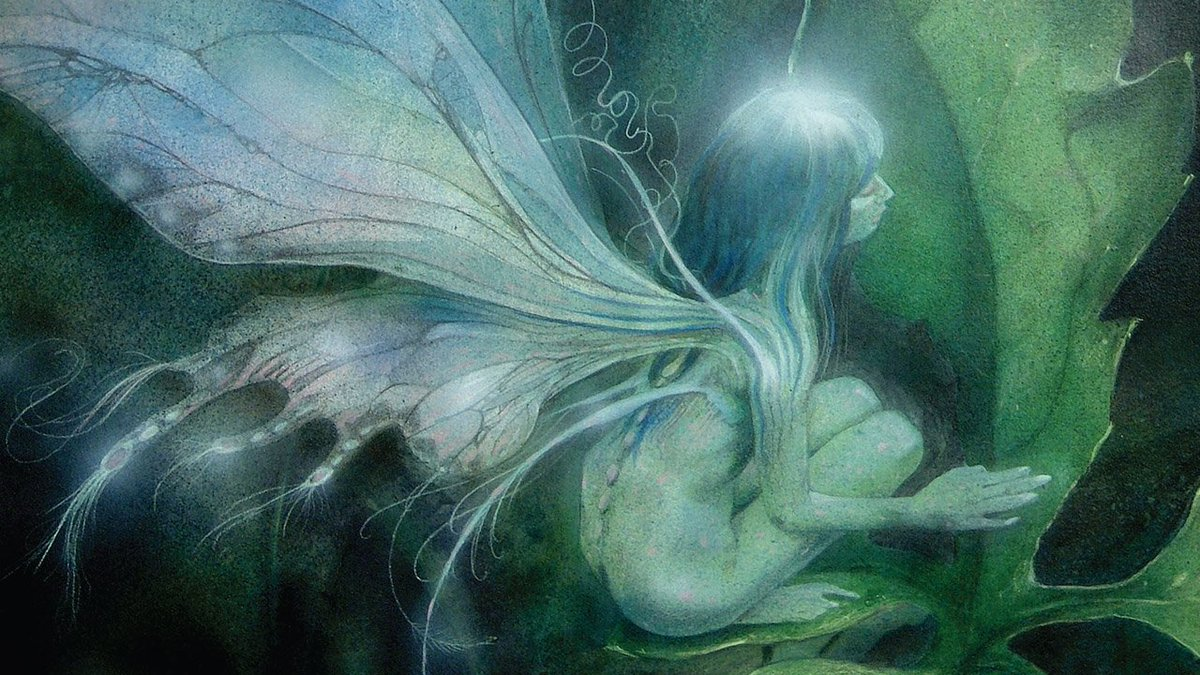 #Fairy/#fay/ #fae/#fey/#FairFolk/#Faerie is a #mythical or #legendary #creature in the #folklore of #European #cultures including #Celtic, #Slavic, #German, #English, and #French. A form of #spirit, #metaphysical or #supernatural #FairyTaleTuesday #keepingClassicsalive 2/12