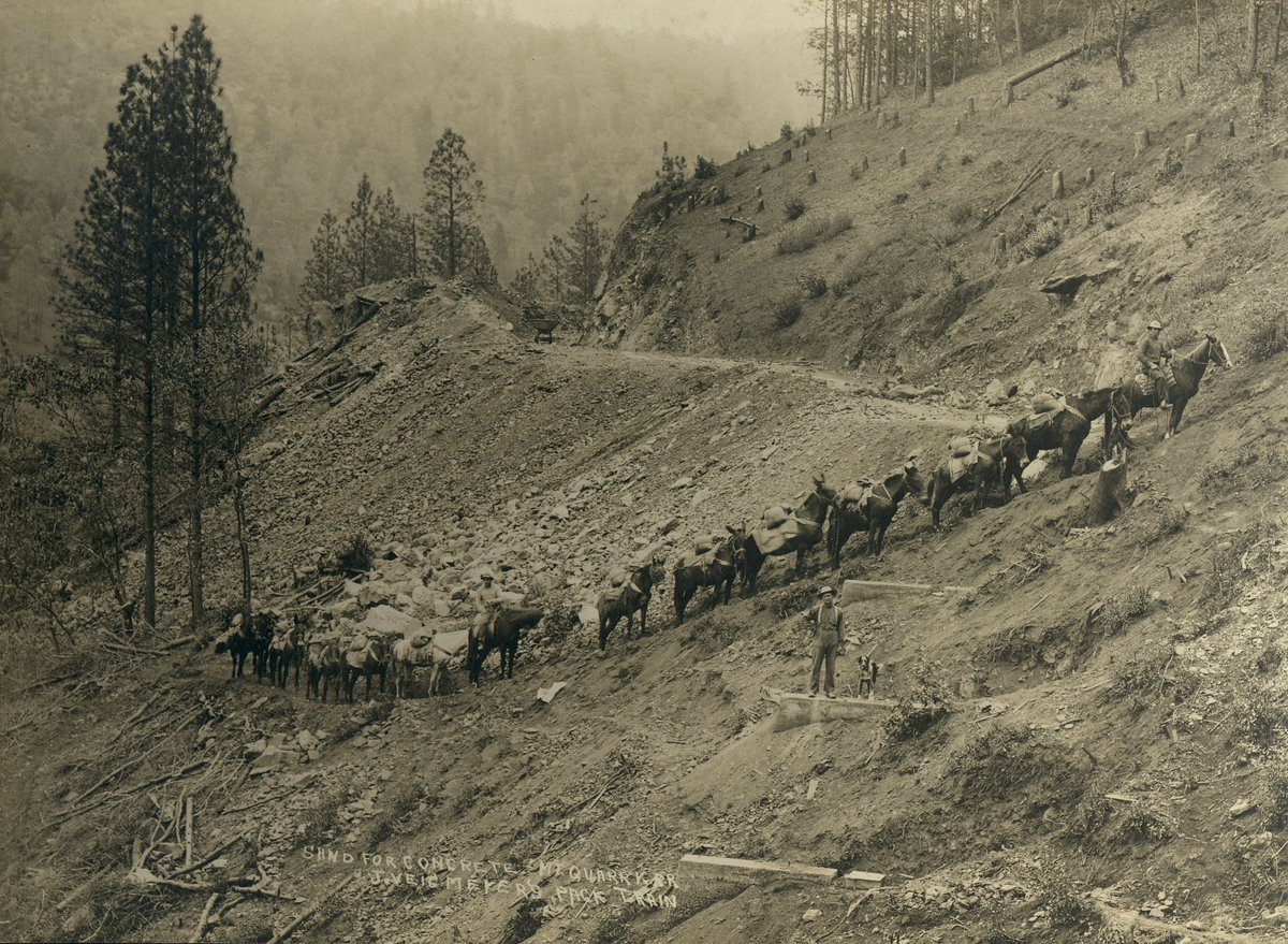 Teamster Charles Ray (on Lead Horse)  c. 1910  Hauling sand for the concrete used to build the Mountain Quarries Bridge.  #tuesdayvibe  #COVID19  #COVIDVaccination