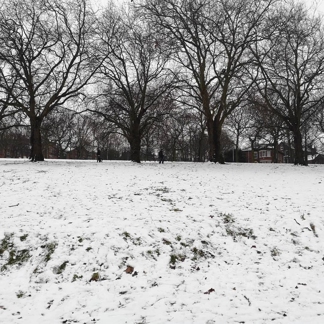 A walk in the park.... In the snow...!!! ☃️❄️🌨️🥶⛄💙🤍 #snowday #notts #snow #nottingham #uk #snowphotography #snowy #park  #snowview #snowsnowsnow #snowday