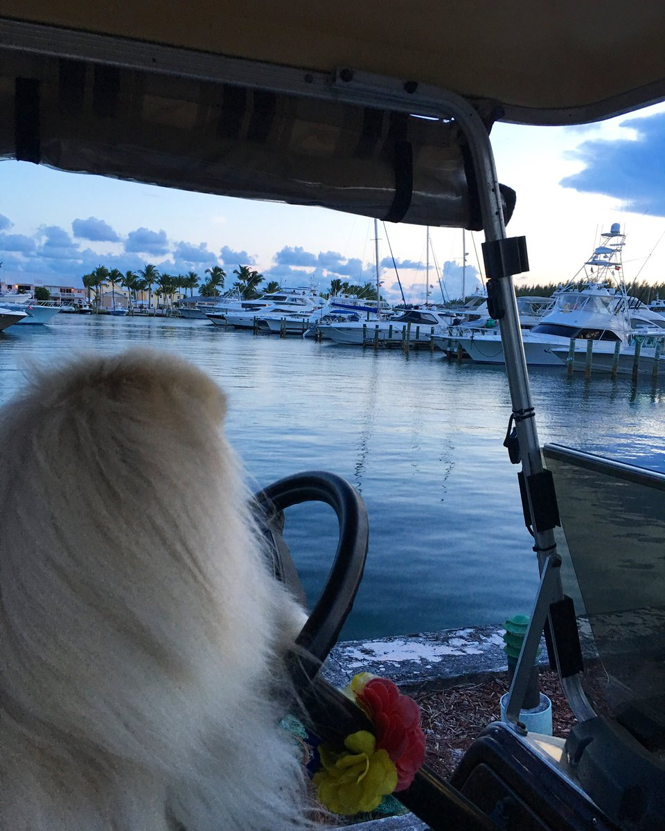 """A ship in harbor iz safe, but dat iznot what ships are built fur."" – #JohnAShedd #tuesdaythoughts 🙏🏻🇧🇸   #summer2019 #treasurecaytribute  . #caligurl #beachday #beachdog #flamingler #flamingling #memory #treasurecay #abacobahamas #boating #boatinglife #boats #marina #marinalife"