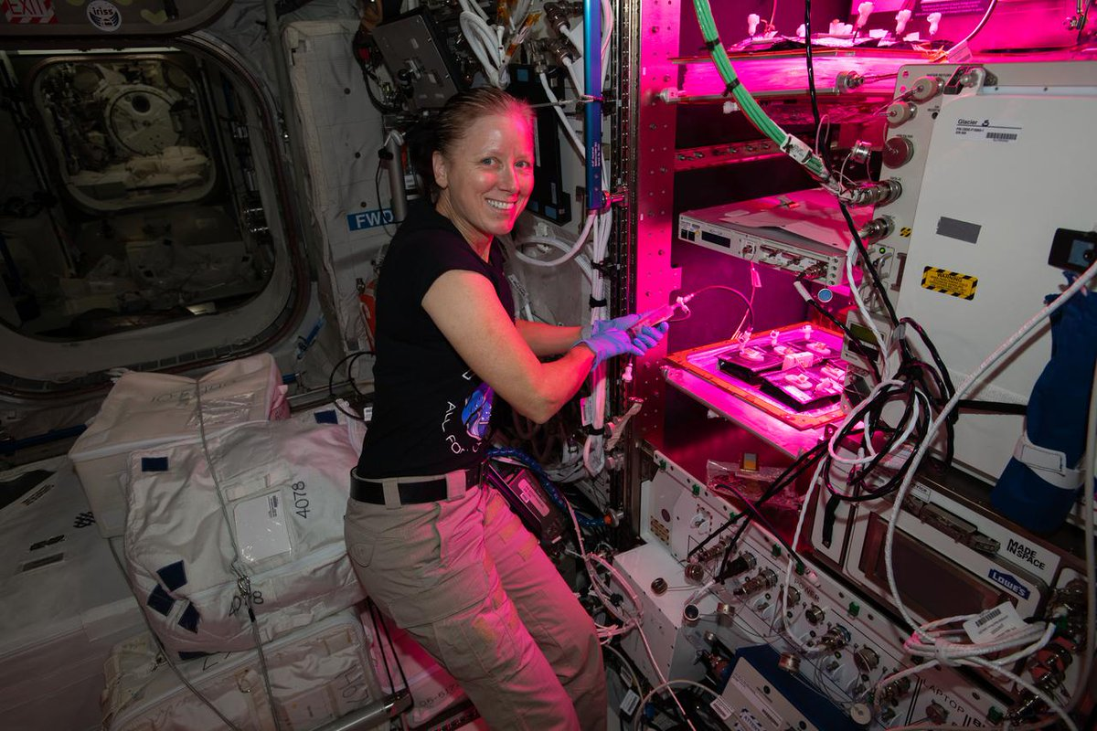 """📚Ready to hear a story from space?  Today at 12:25pm ET, astronaut Shannon Walker will read """"Willow the Water Bear"""" LIVE from the @Space_Station! After launching to the station on the Crew-1 mission, she is currently serving as the Exp 64 Flight Engineer:"""
