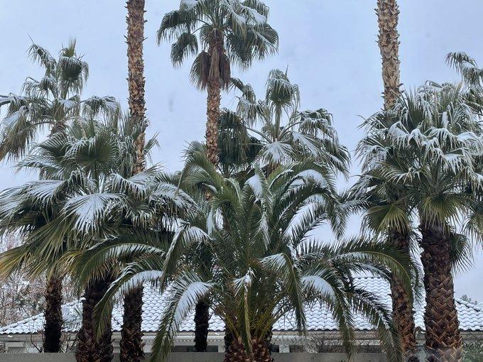 2 pic. It snowed in vegas at my house. ❄️🌨☃️ https://t.co/5xPtoVA3Oo