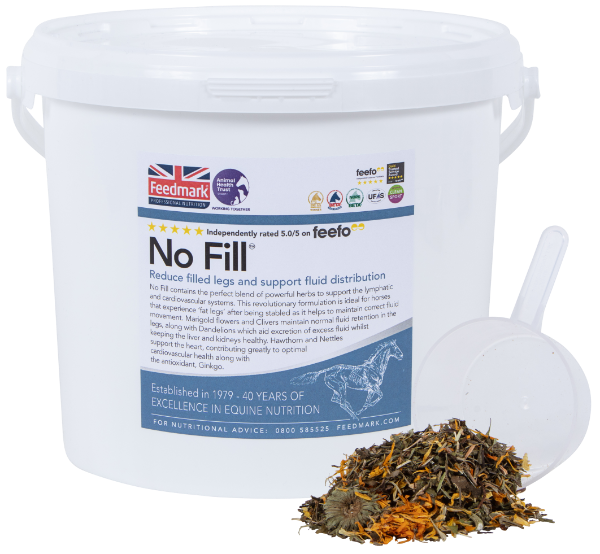 No Fill  The perfect blend of herbs to support the lymphatic and circulatory systems to banish filled legs!  👉    #feedmark #horse #equine #equinehealth #nutrition #nofill #support