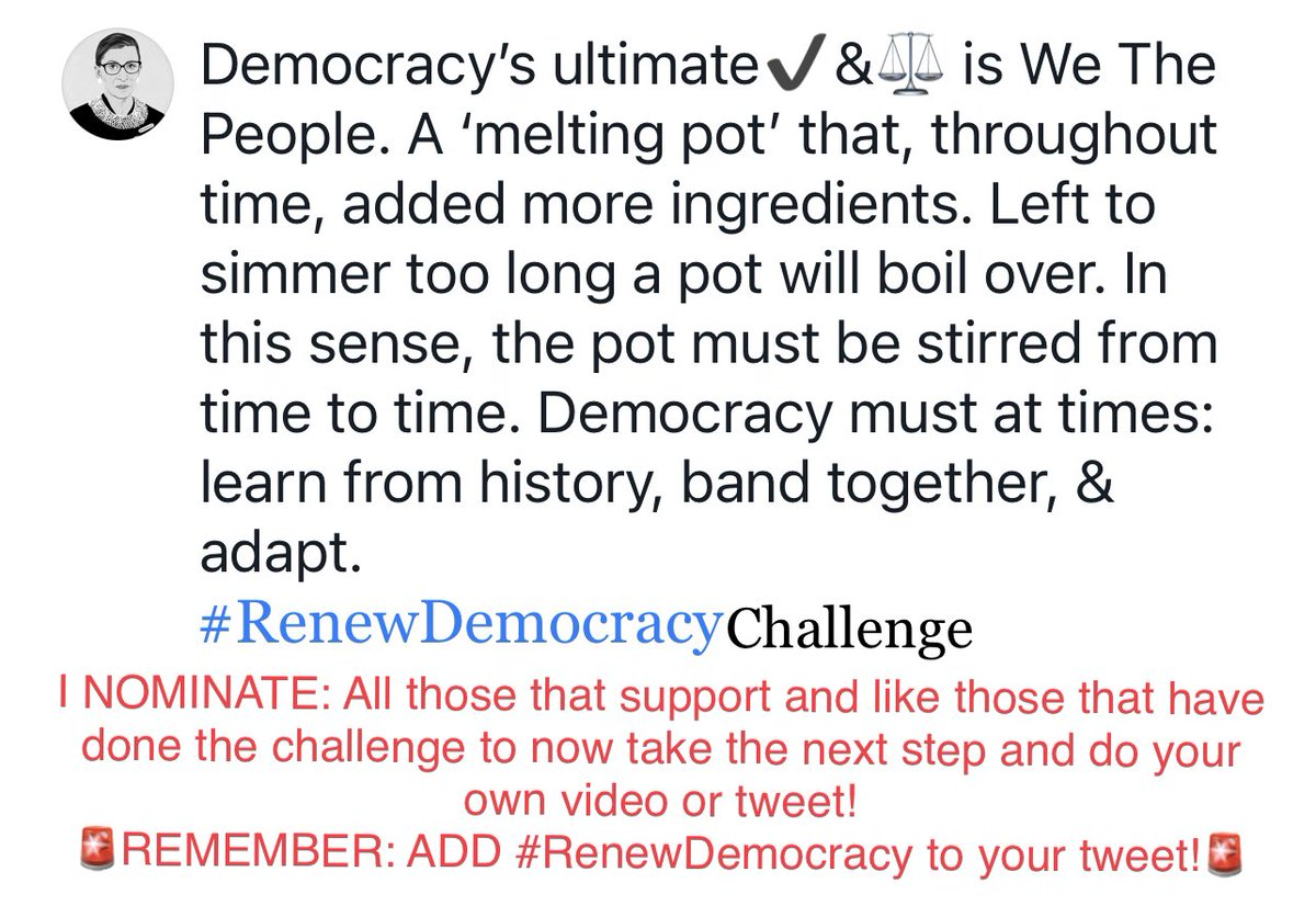 """@Renew_Democracy @DanielMillerEsq Count me in & TY for the invite! I vow to """"summons up all my courage"""", face my fear for anonymity, & post a📹 w details on both my choice to nominate myself for the #RenewDemocracy Challenge & what democracy means to me in more detail. Til then👇"""