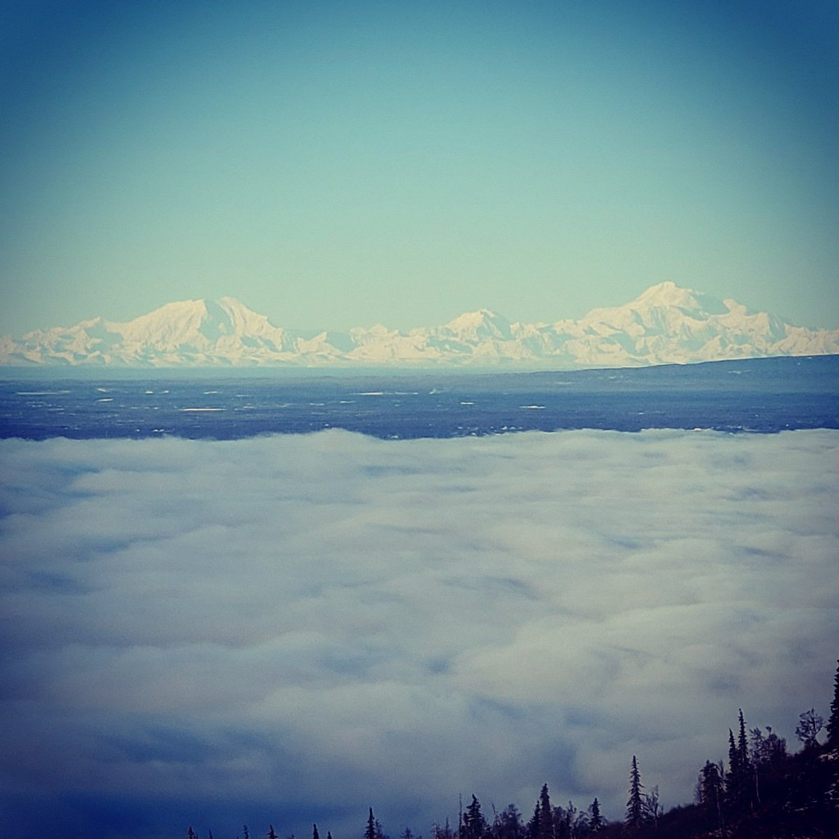 Denali, Hunter and Foraker looking almost ghostly across the Cook Inlet yesterday.   #ALASKA  #WritersCafe #adventureisoutthere #tuesdaymotivations