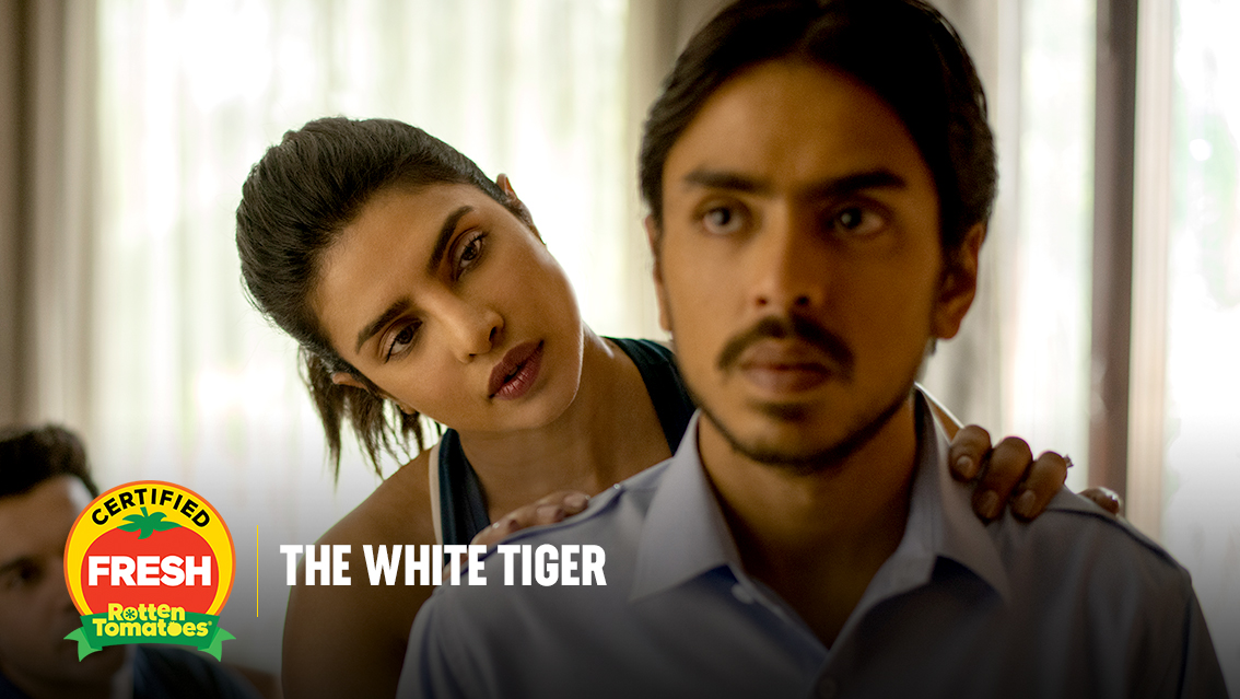 #TheWhiteTiger is #CertifiedFresh at 91% on the #Tomatometer, with 116 reviews: