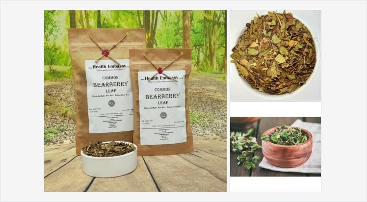 Common Bearberry Leaf (Arctostaphylos uva-ursi L.) #commonbearberryleaf #commonbearberry #arctostaphylosuvaursi #kinnikinnick #herbaltea #vegetarian #remedies #homeopathy #naturalmedicine #organicherb #herbalism #witchcraft #spell #dietary #diet #health