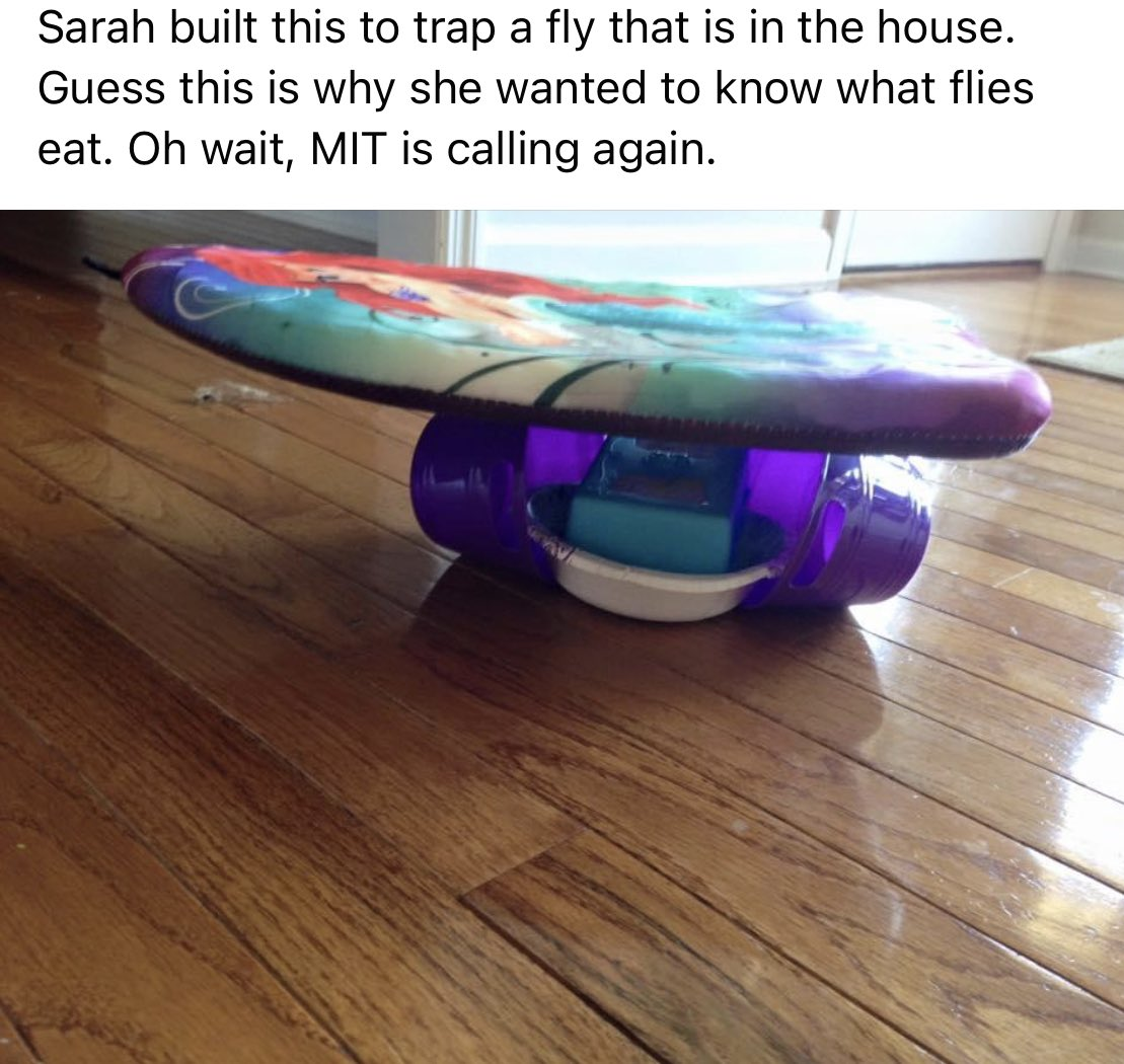 @jimmyfallon My daughter came up with this fly trap when she was 5. #MyWorstInvention