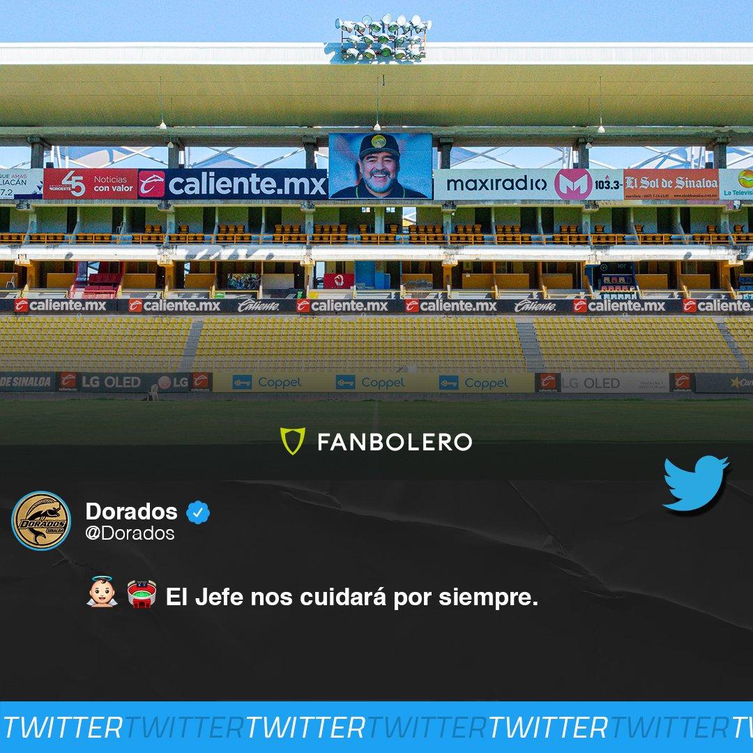 ¡HOMENAJE AL 'PELUSA'!  Dorados de Sinaloa no olvida a Maradona y colocó una  imagen del astro argentino en las instalaciones de su estadio 🐠🏟️🇦🇷🇲🇽  #Dorados #Sinaloa #Maradona #DiegoMaradona #SoyFanbolero https://t.co/ddVtQVZEUr