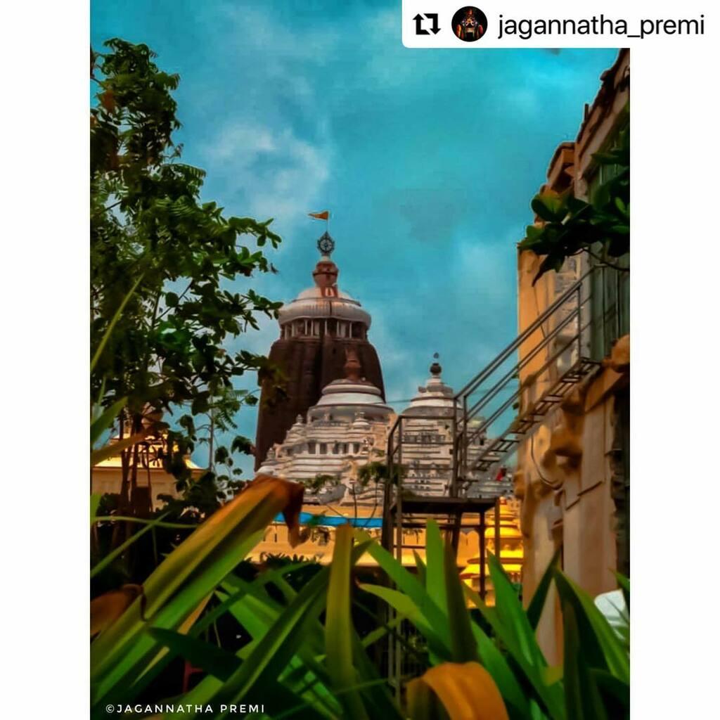 #bhubaneswarbuzz #jaijagannath pic courtesy  @jagannatha_premi  ・・・ ନୀଳଚକ୍ରେ ହୋ ଦେଖ ଉଡୁଛି ବାନା ପତିତପାବନ ନାମଟି ଯାର ନାଁ ।।  ଜୟ ଜଗନ୍ନାଥ 🙏 .#jagannath💗#Джаганнатха#jagannathpuri#odisha#hindu#love#devotion#jayjagannath#hope#জয়জগন্নাথ#jagannathswami#jaijagannath#lo…