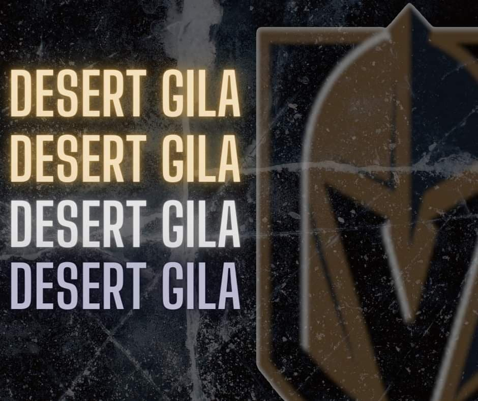 "All new from Desert Gila - @PokecheckC writes ""First Shootout of the Season Didnt go Vegas' Way""  #VegasBorn #HockeyTwitter"