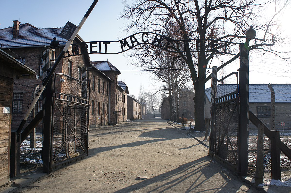 Hey guys. On this day, the 27th of January in the year 1945, Soviet troops entered Auschwitz, Poland, freeing the survivors of the network of concentration camps—and finally revealing to the world the depth of the horrors perpetrated there. #Auschwitzliberationday #OnThisDay