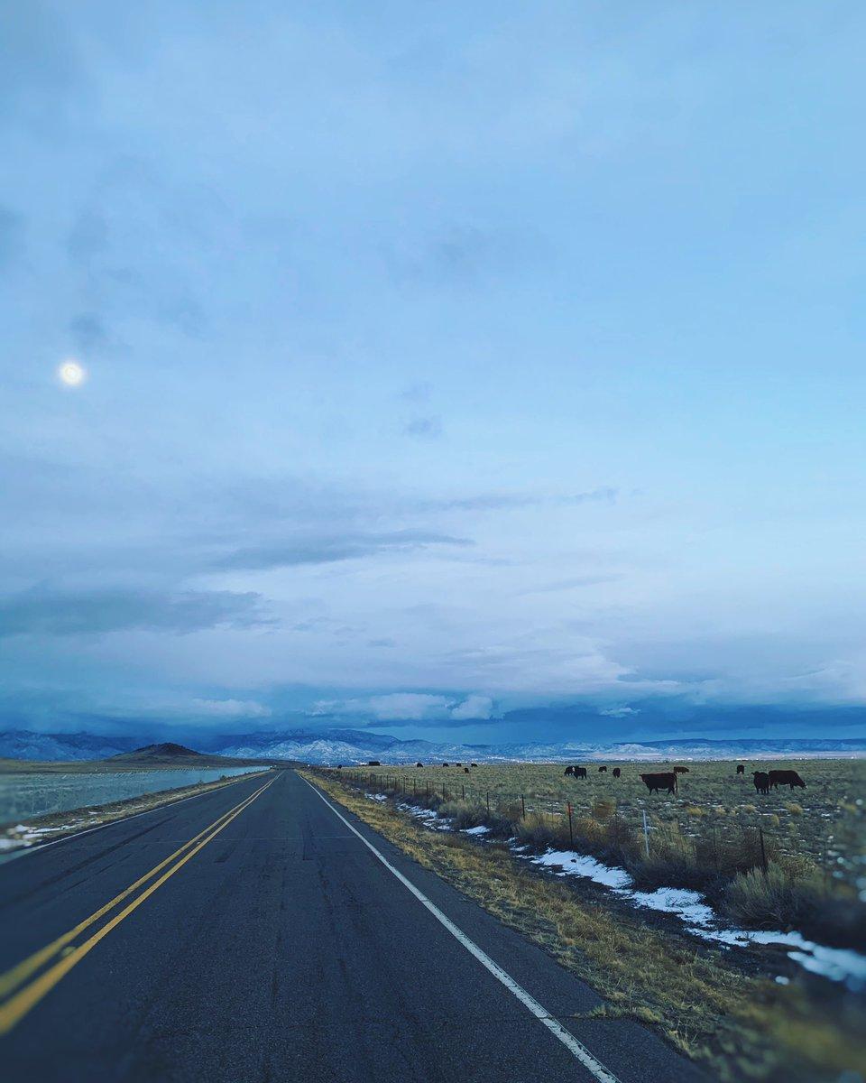 フローズン。 地球。The Frozen World❄️🌎#Albuquerque #newmexicotrue #landscapes #frozen #earth #vsco #edit