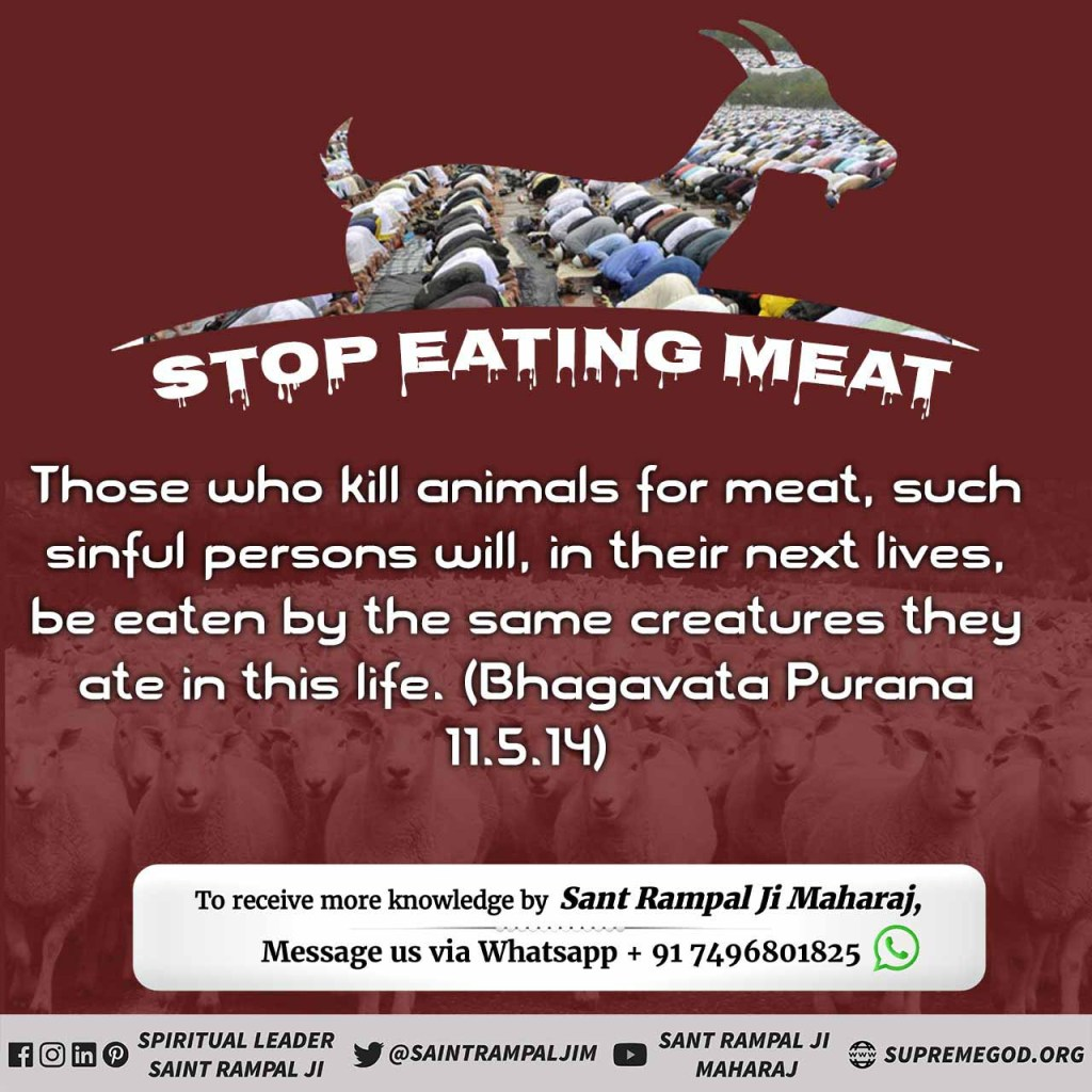 #wednesdaythought #WednesdayMotivation Those who kill animals for meat, such sinful persons will, in their next lives, be eaten by the same creatures they ate in this life.  -Bhagavata Purana 11.5.14