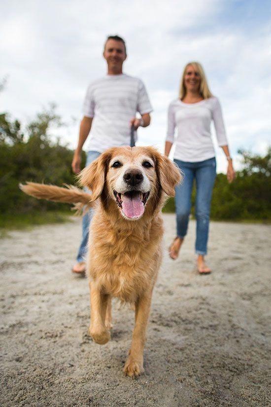 #dog #friend #family #love #familyday