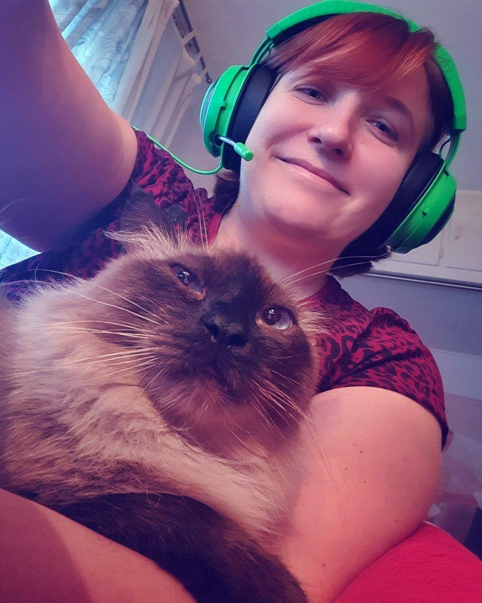 #awesamtwtselfieday Cat says 'hiii' :3