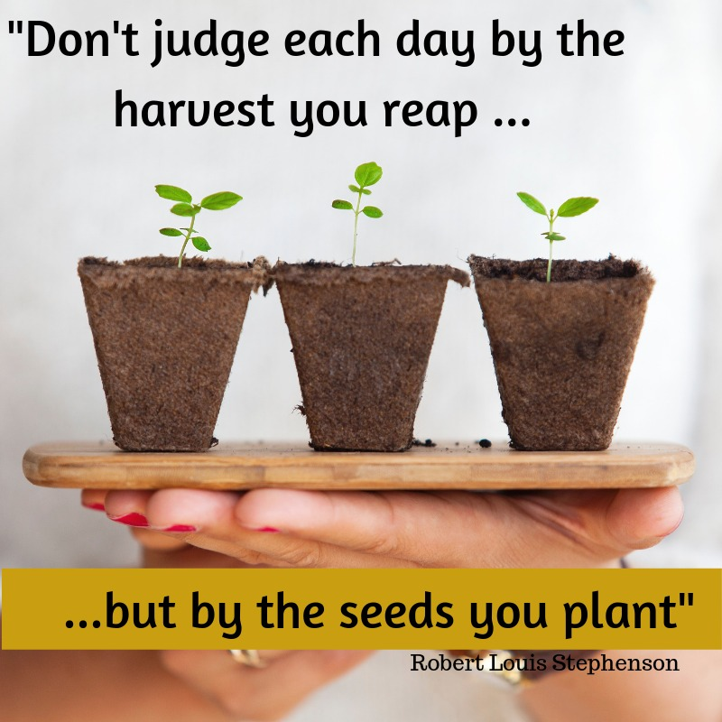 """Don't judge each day by the harvest you reap, but by the seeds you plant.""""- Robert Louis Stephenson #ThoughtOfTheDay https://t.co/pO2Hp7VDn3"""