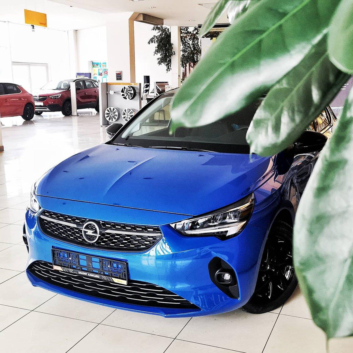 #Voltaic to kolejny niezwykły kolor nowej #CorsaF 😍 Ten mały miejski samochód potrafi nieźle zaskoczyć. Testowaliście już❓💪  #corsa #opelcorsa #Opel #OpelPolska #opellovers #OpelPl #OpelPoland #opelkanclerz #salonykanclerz #car #carphotos #polandcar #newcar #carlovers