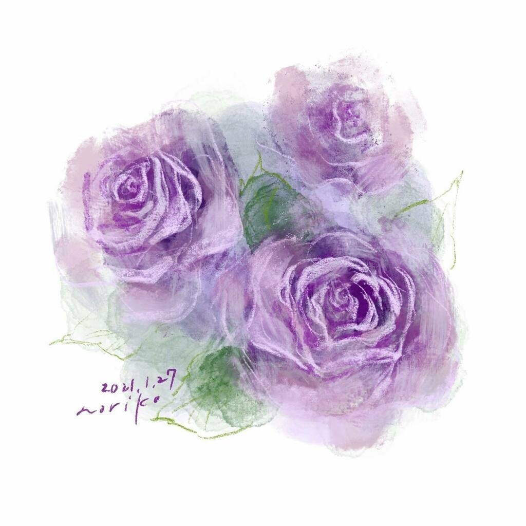 . Rose #バラ #ブルームーン  #花 #flowers  #rose #bluemoon  . . #akane_art #イラスト #illustration #20210127 #drawing #art #painting #procreate #一日一絵 #onesktchaday #onedrawingaday #365drawings