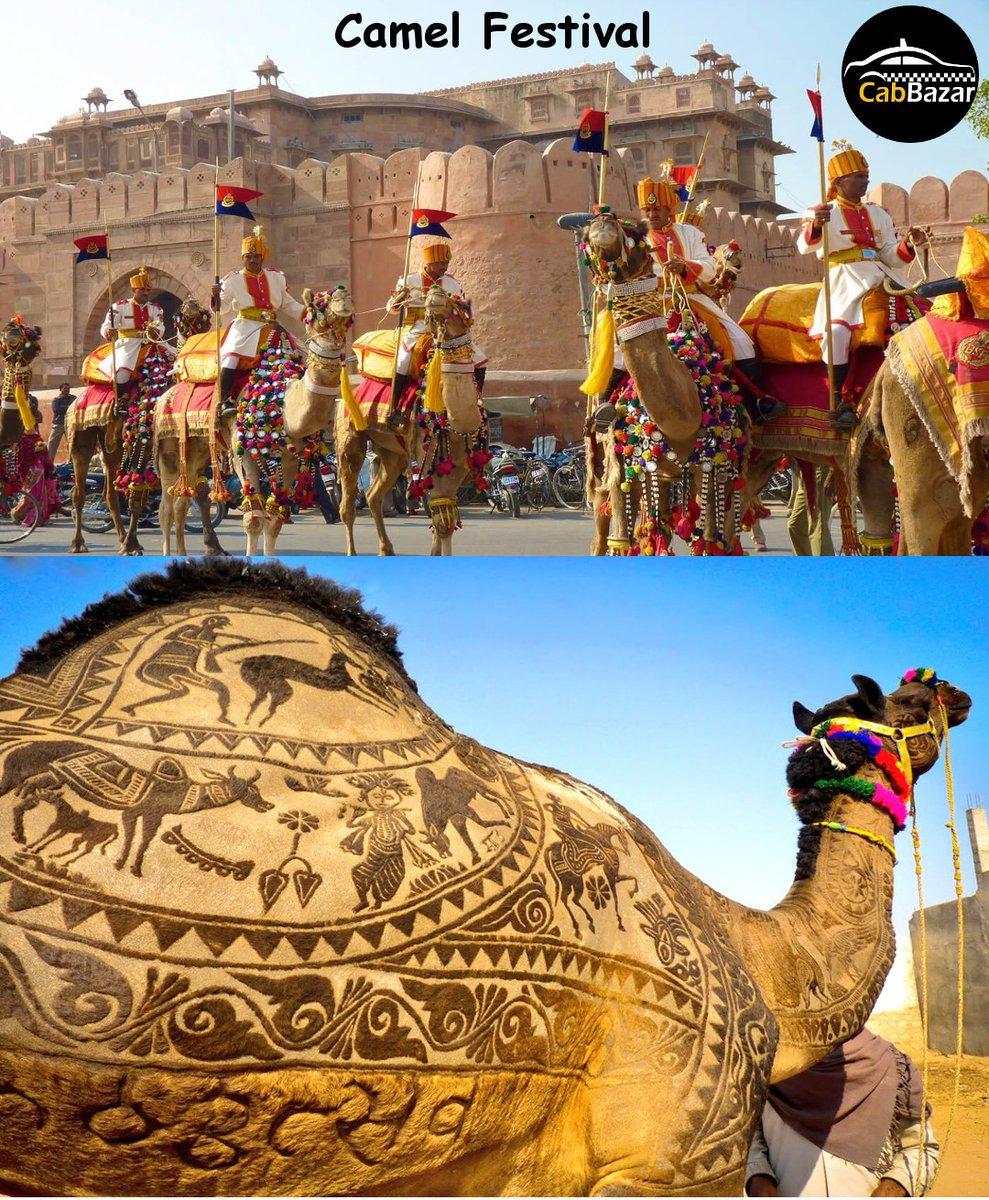 City of Camel Festival, Bikaner Like @cabbazar page to follow complete tour   #travel #fun #friends #live #family #tour #destinations #city #Trending #bikaner #bikanerdiaries #bikanertrip #bikanertourism #camelfestival #camel #festival #camelfestivalbikaner