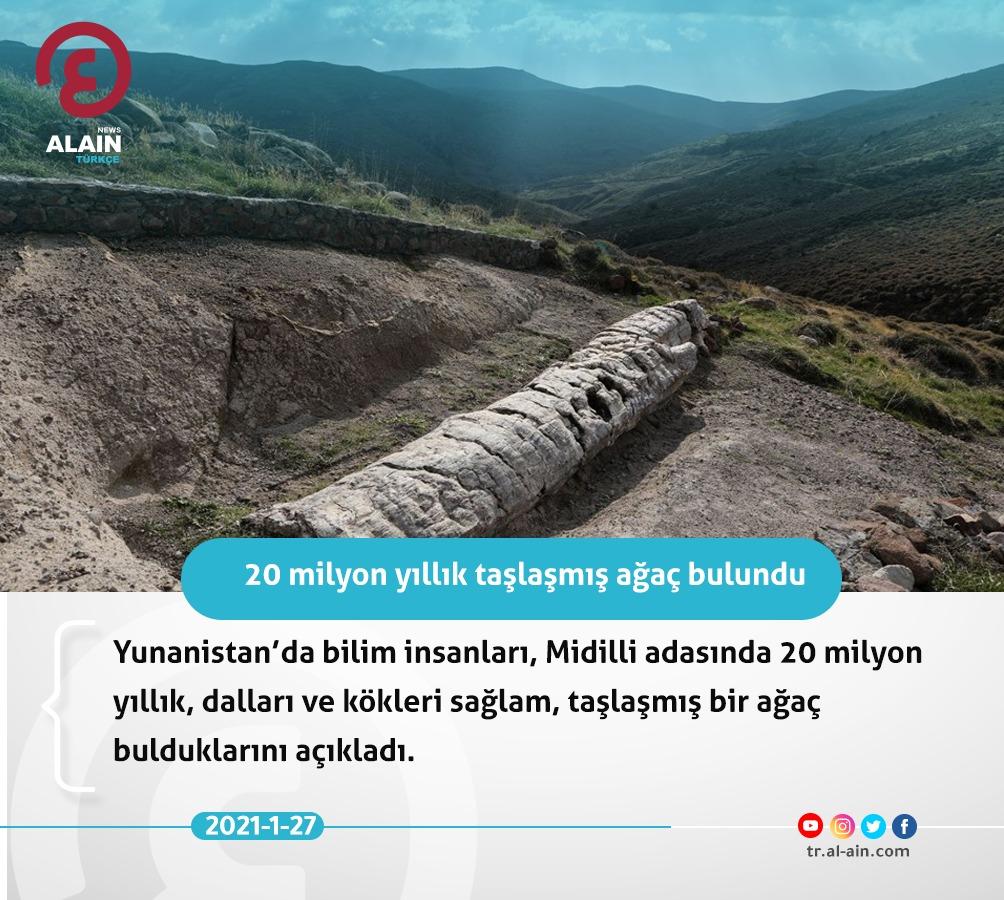 20 milyon yıllık taşlaşmış ağaç bulundu  #Dünyayaaçılangözünüz #AlAinAlİhbariye https://t.co/fIZE43Sccf