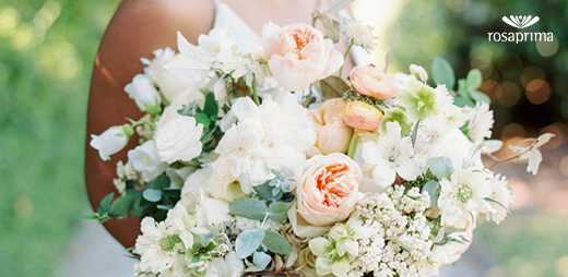 Last month, Christy Hulsey shared some of her reflections in her Florist Spotlight.   Click to read more!    Photography @abigaillewisphoto  #throwbackthursday #tbt #floristspotlight #rosaprimamoments #iconicroses #weddingphotography #luxurybouquets