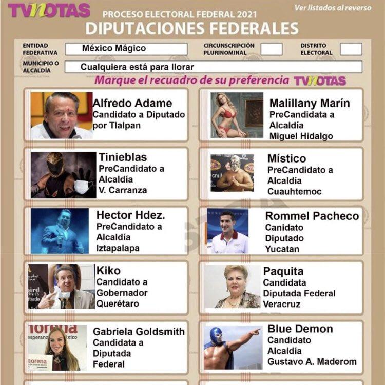 EleccionEsMxTT photo