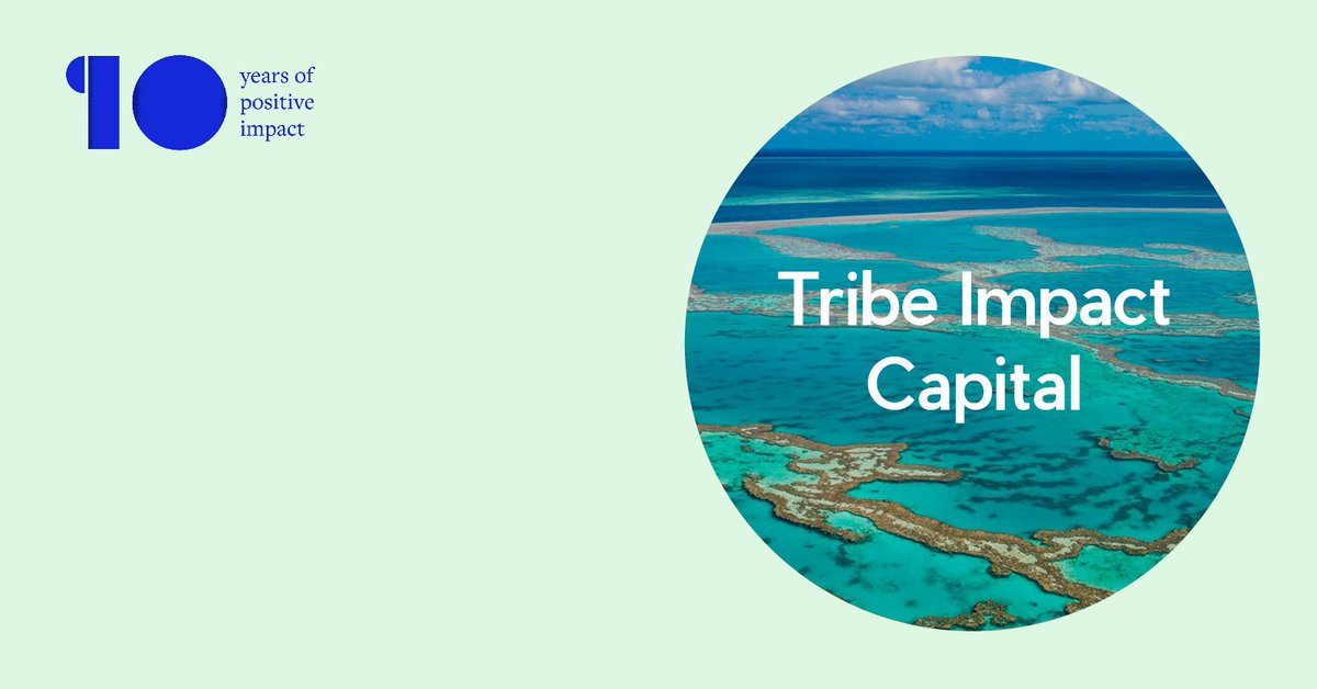 We launched Tribe Impact Capital to establish 'A New Wealth Order', where their clients' capital is mobilised to create a more equal and prosperous world.   Read the full case study here on our website:   #wealthmanagement #socialimpact #creativestrategy