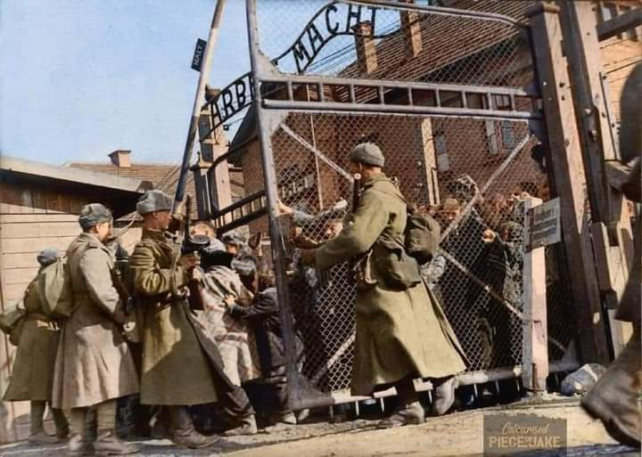 """27th of January 1945, Soviet Soliders tore down the gates of Auschwitz concentration camp. A place where a estimated 1.1 million of the 1.3 million inmates were killed in as Hitler called it """"The Final Solution""""  #HolocaustRemembranceDay"""