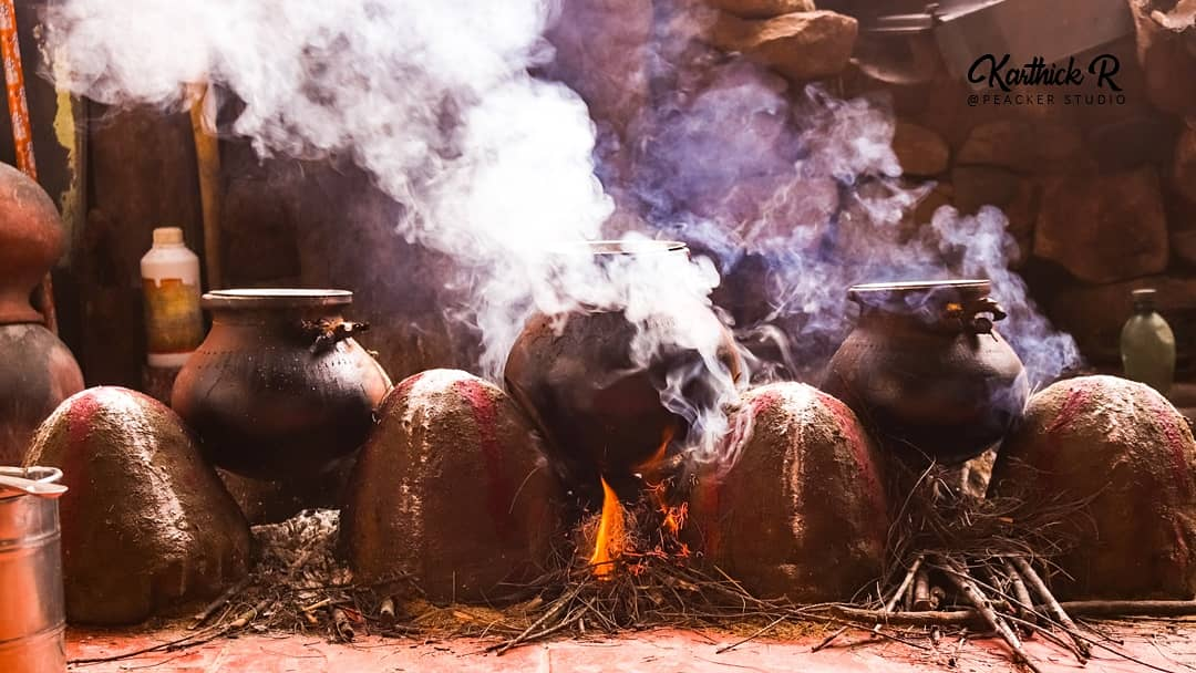 The more you celebrate your life, the more there is in life to celebrate.  Photographer : @thisiskarthickr  #peackerstudio #pongal #celebration #peace #traditional #pot #pongalcelebration #january #respect #festival #photography #casual #click #festivalphotography #photoftheday