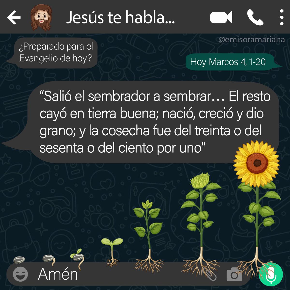 😳¿Nuestro corazón es un buen terreno para la siembra de Dios?🤭😇  🌾 #27Ene #EvangelioDelDia #FelizMiercoles #27Enero #FelizMiércolesATodos #BuenosDias #Feliz2021 #WhatsApp