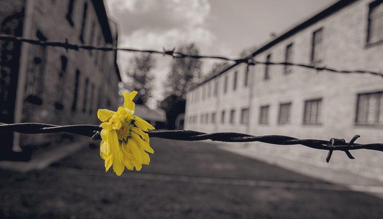 #WeRemember #HolocaustRemembranceDay #pernondimenticare