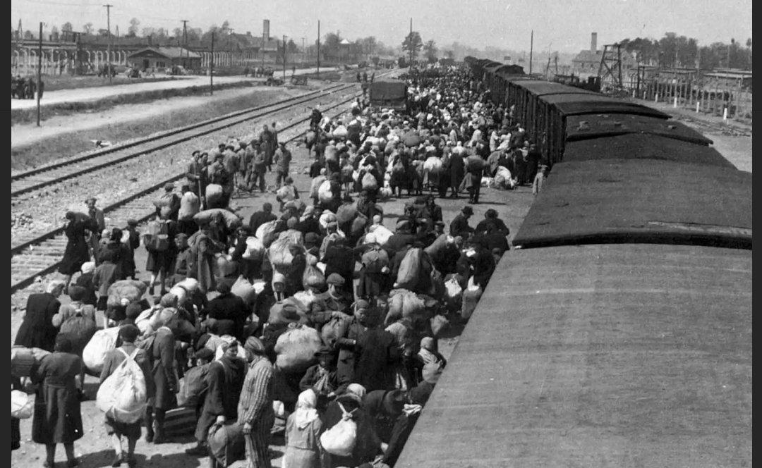 #Hoy es el Día Internacional de Conmemoración en Memoria de las Víctimas del #Holocausto y se cumplen 76 años de la liberación de #Auschwitz. Recordemos para que no se repita jamás #Recordemos #WeRemember @MdeGobierno @AndreaKohan2 @TawilRafi