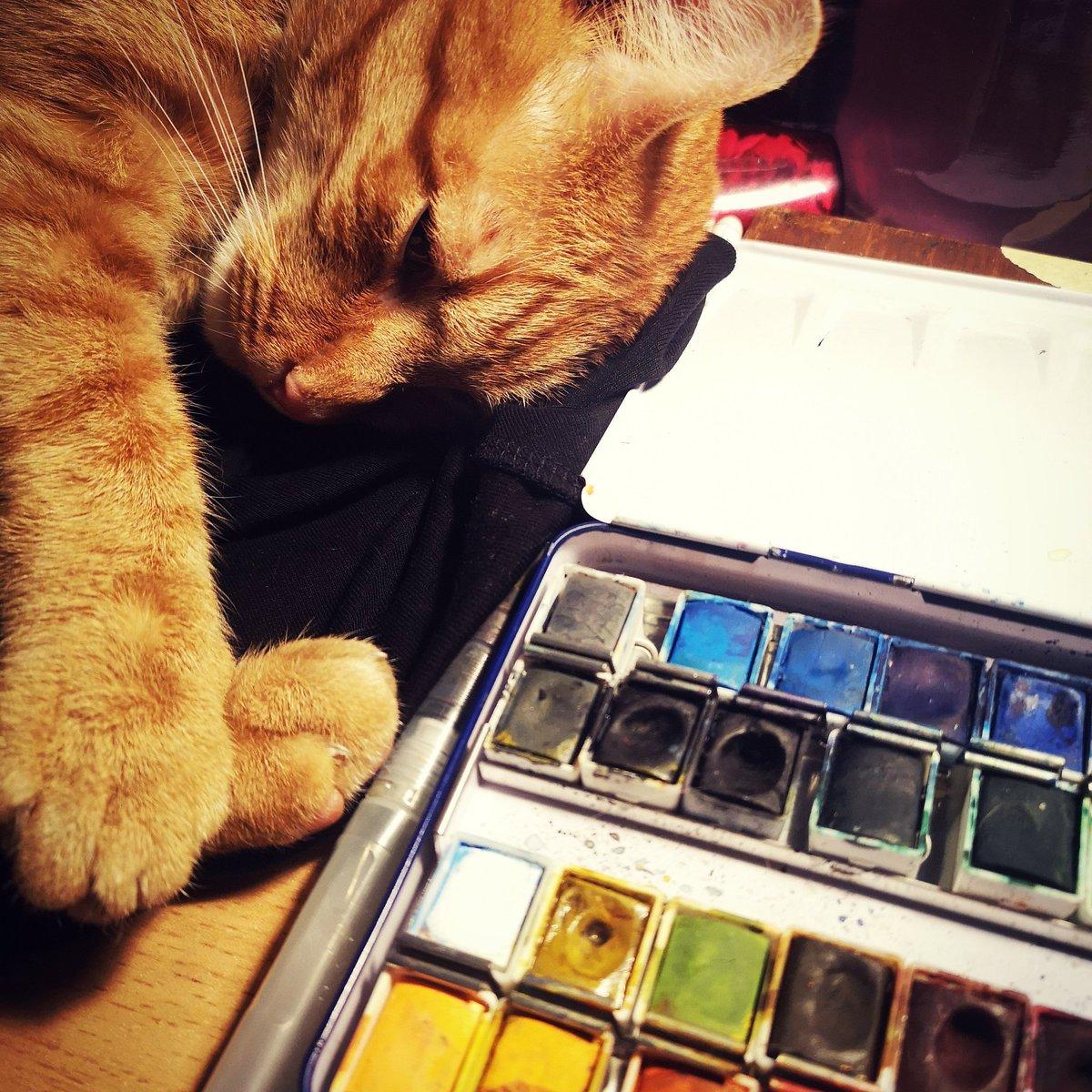 Best art assistant 🖤 My little sweetheart, Tormund #artistsontwitter #artshare #CatsOnTwitter #cat